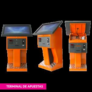 terminaldeapuestas 300x300 - terminaldeapuestas - vne -
